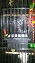 Boucher portes coulissantes Dsc_9310