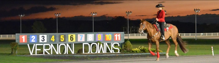 Horse Racing Handicapping and Discussion