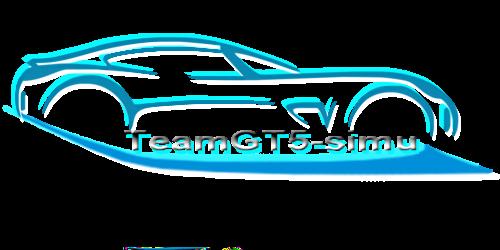 logo  Sans_t11