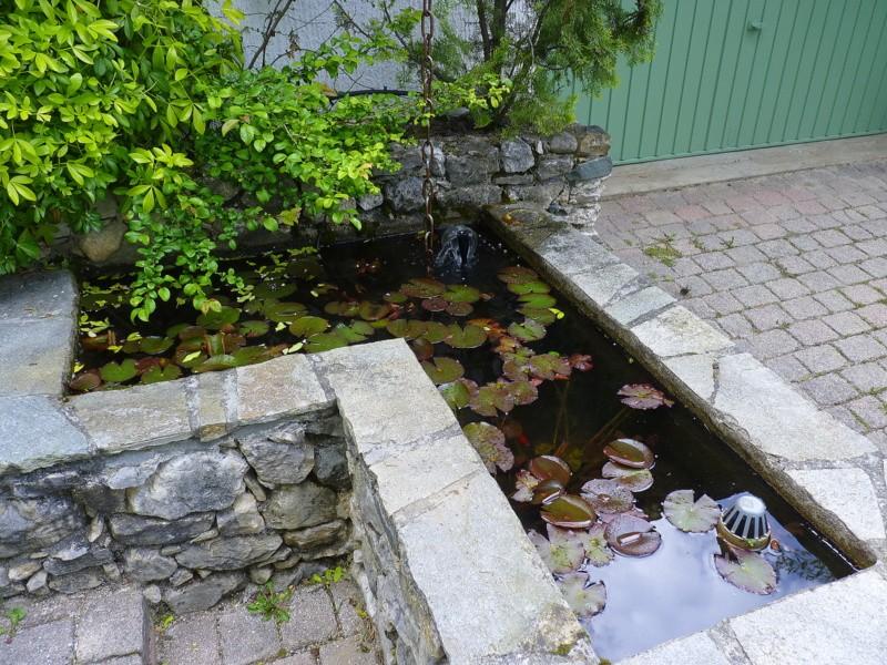 bassin en pierres apparentes 650L style Japonais P1030310