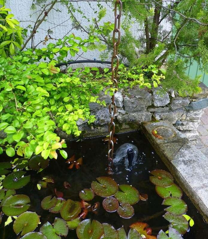 bassin en pierres apparentes 650L style Japonais P1030312