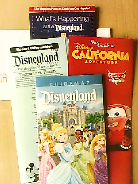 Commander les brochures des Resorts Disney - Page 14 Dsc-0016