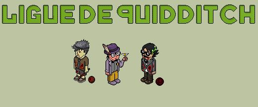 Ligue de quidditch
