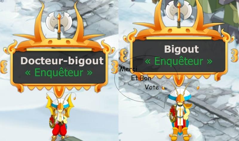 Candidature M.Bigout  Iop-en13