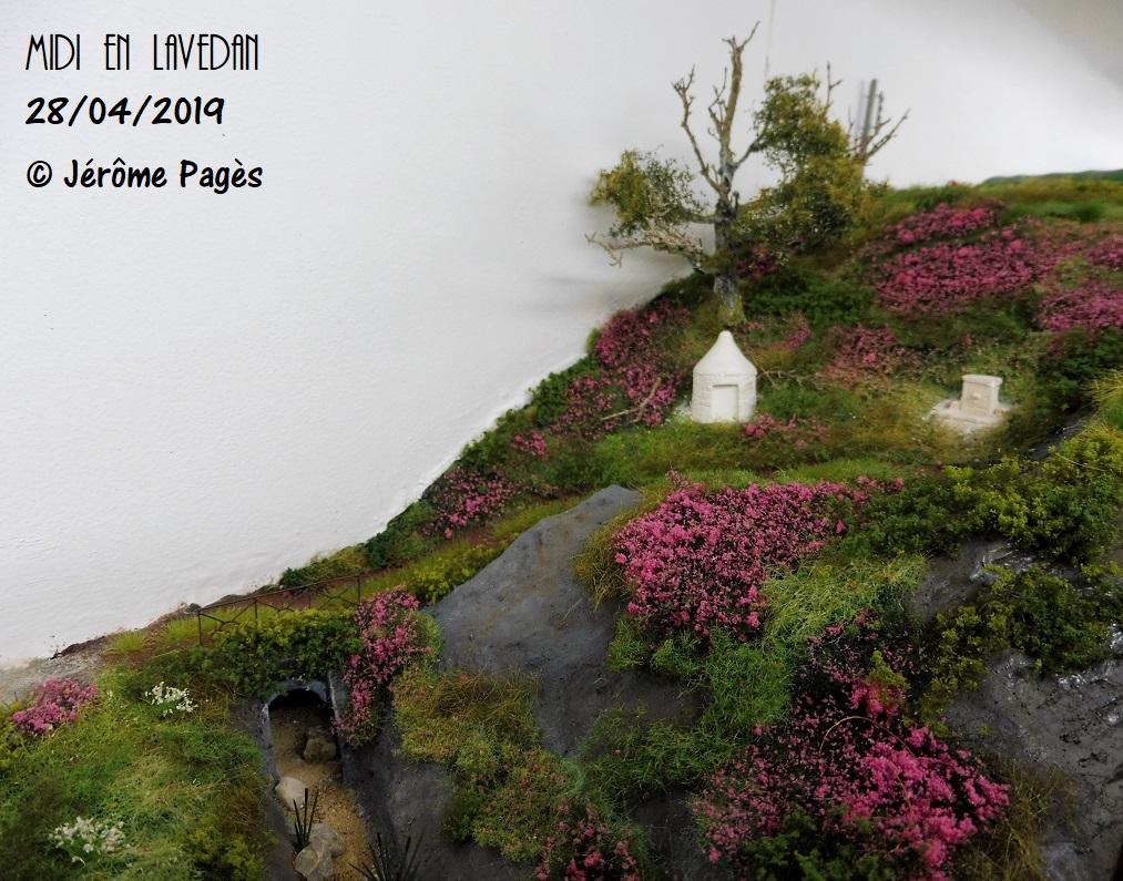 MIDI en Lavedan - Page 12 2019_013