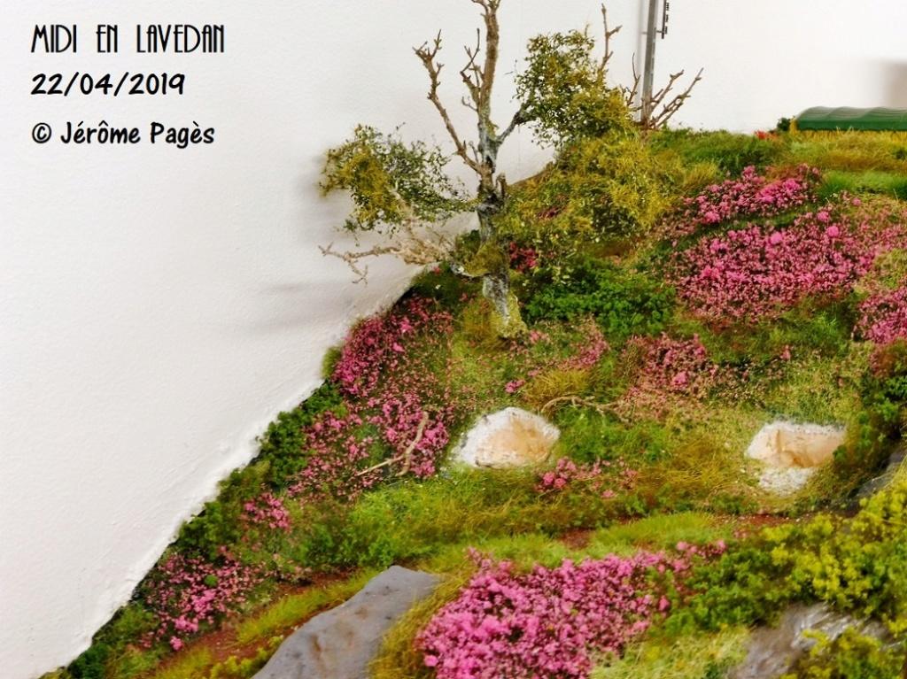 MIDI en Lavedan - Page 12 Rp103017