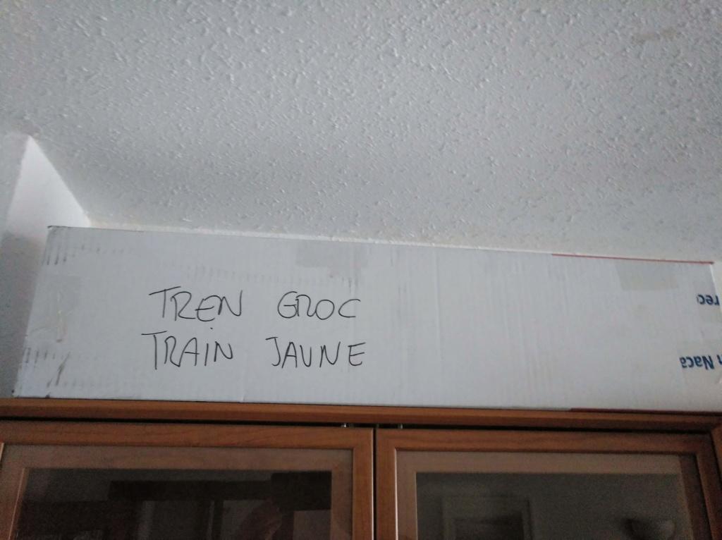 tren groc escala G/IIm Img_2288