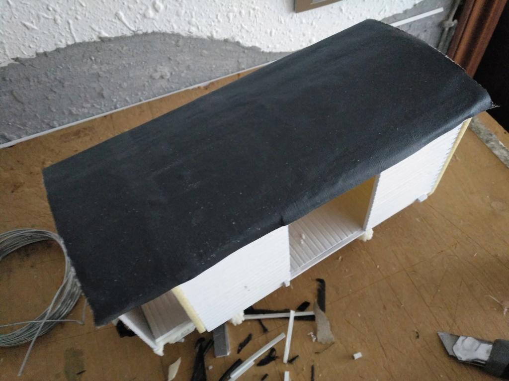 vagons garita vasco navarro Img_2620