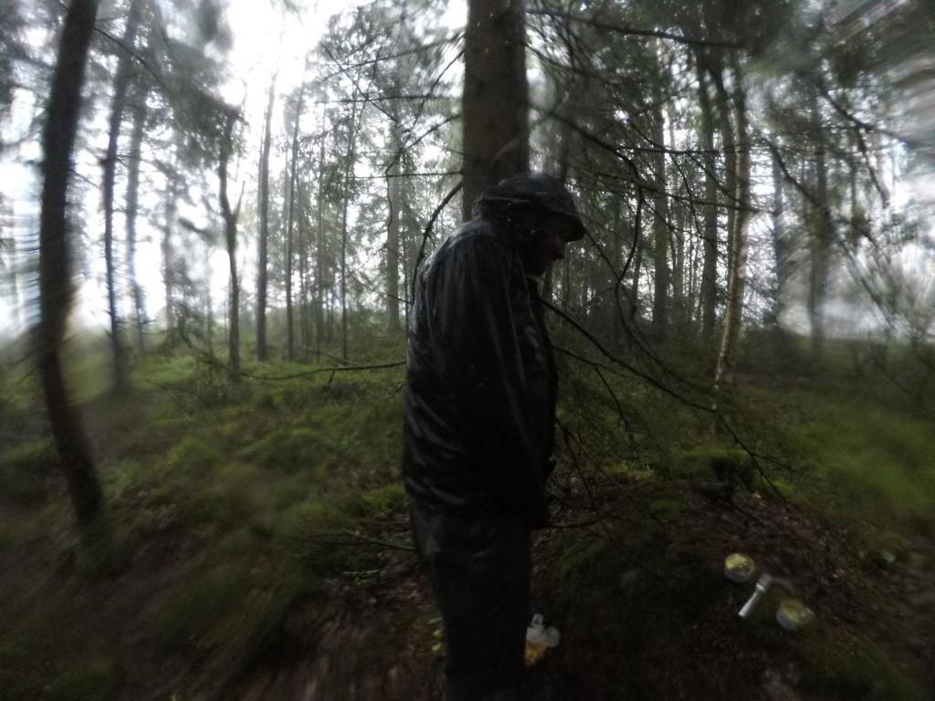 Le voilà- Suède 2019- un mois intense dans la nature Lapone Gopr5010