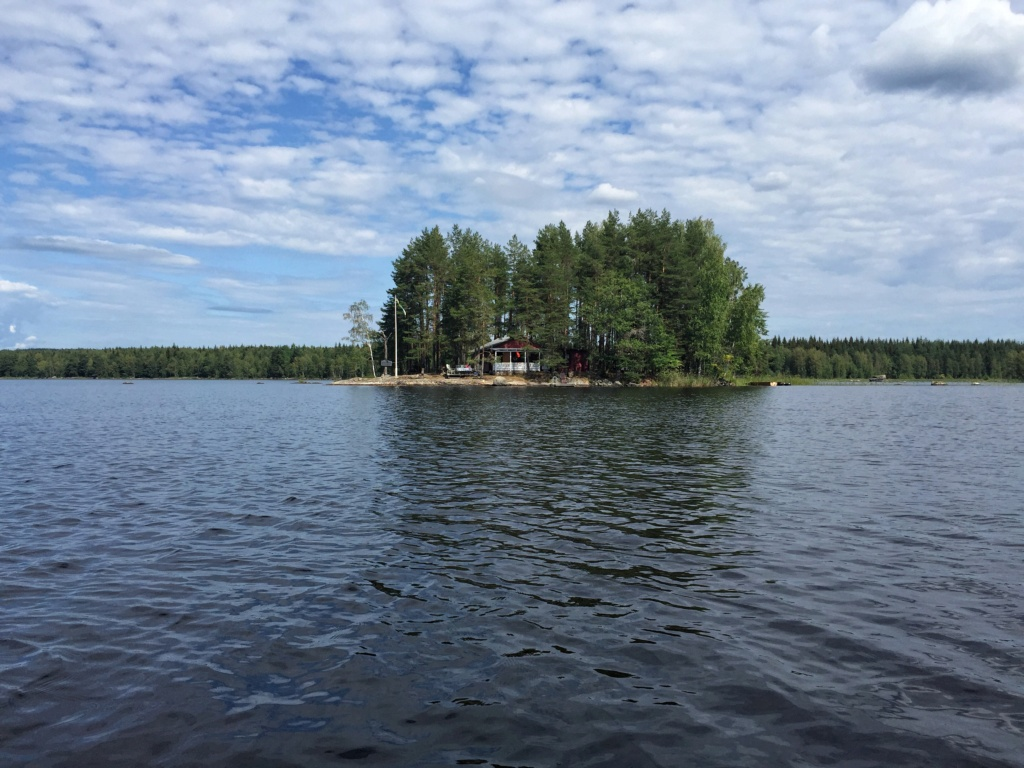 Le voilà- Suède 2019- un mois intense dans la nature Lapone Img_8913