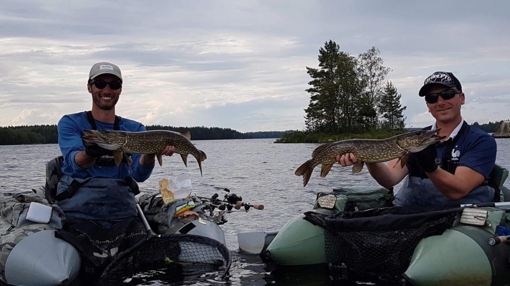 Le voilà- Suède 2019- un mois intense dans la nature Lapone Img_8914