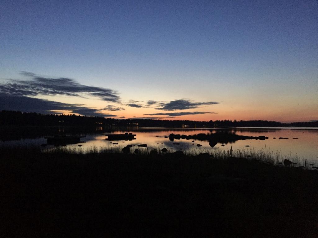 Le voilà- Suède 2019- un mois intense dans la nature Lapone Img_9115