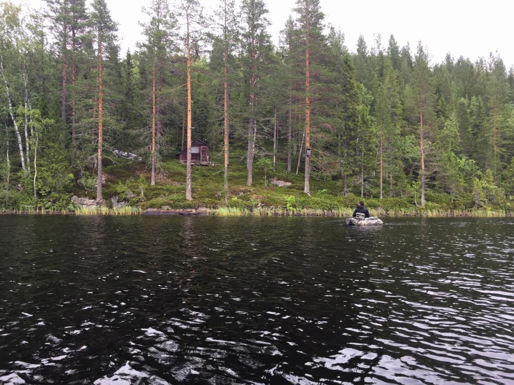Le voilà- Suède 2019- un mois intense dans la nature Lapone Img_9210