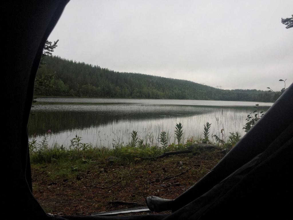 Le voilà- Suède 2019- un mois intense dans la nature Lapone Img_9219