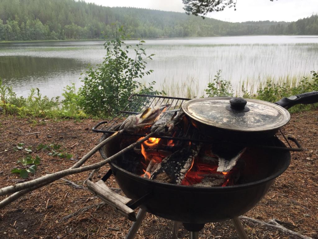 Le voilà- Suède 2019- un mois intense dans la nature Lapone Img_9312