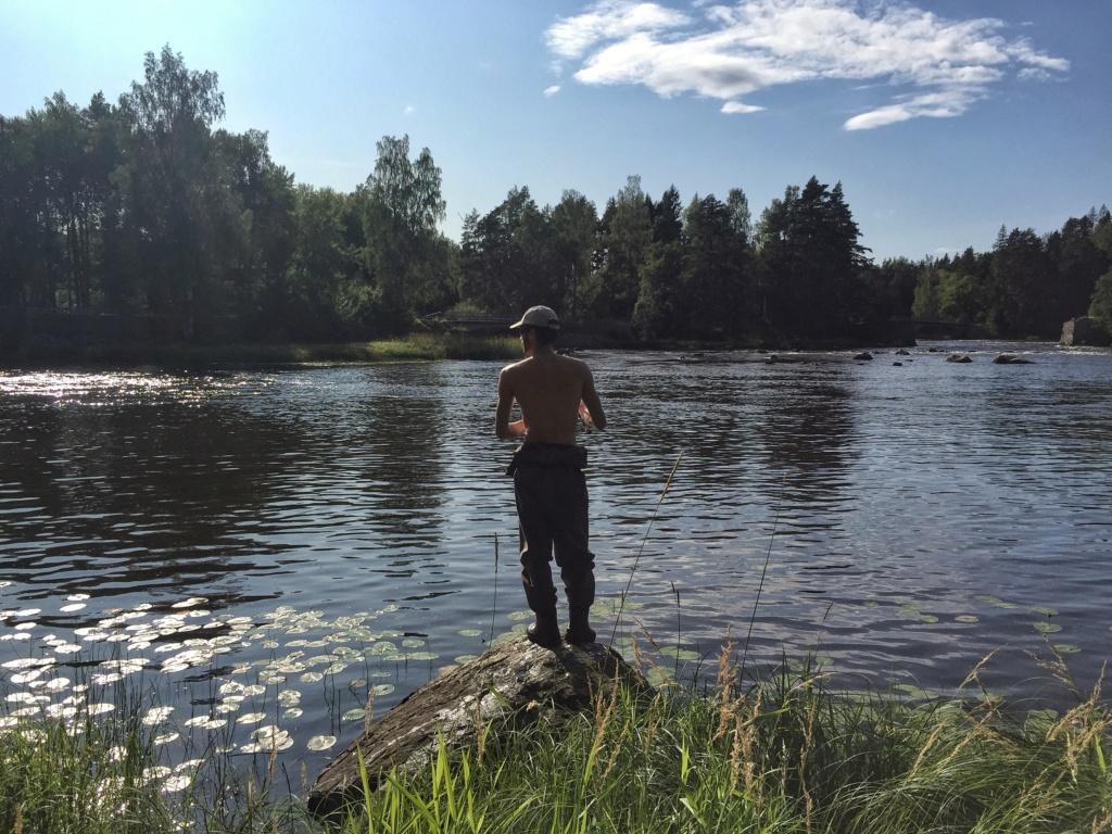 Le voilà- Suède 2019- un mois intense dans la nature Lapone Img_9323