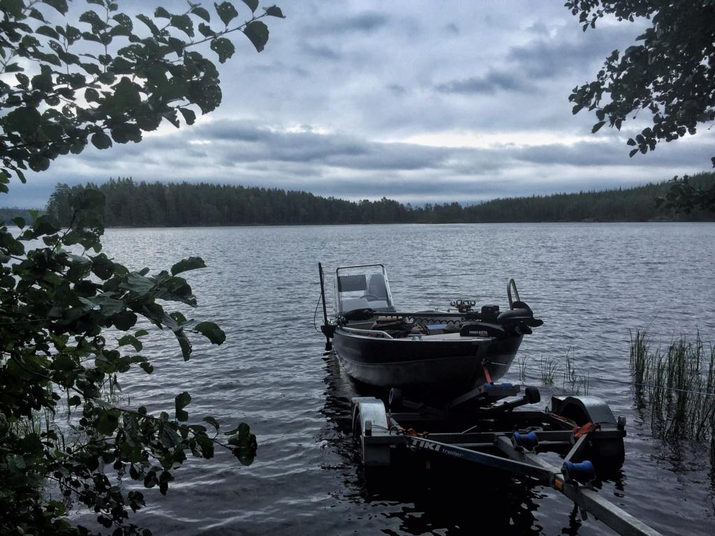Le voilà- Suède 2019- un mois intense dans la nature Lapone Img_9328
