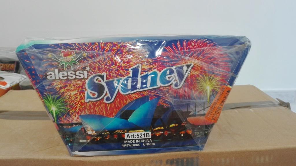 ART.521B Sydney Img_2075