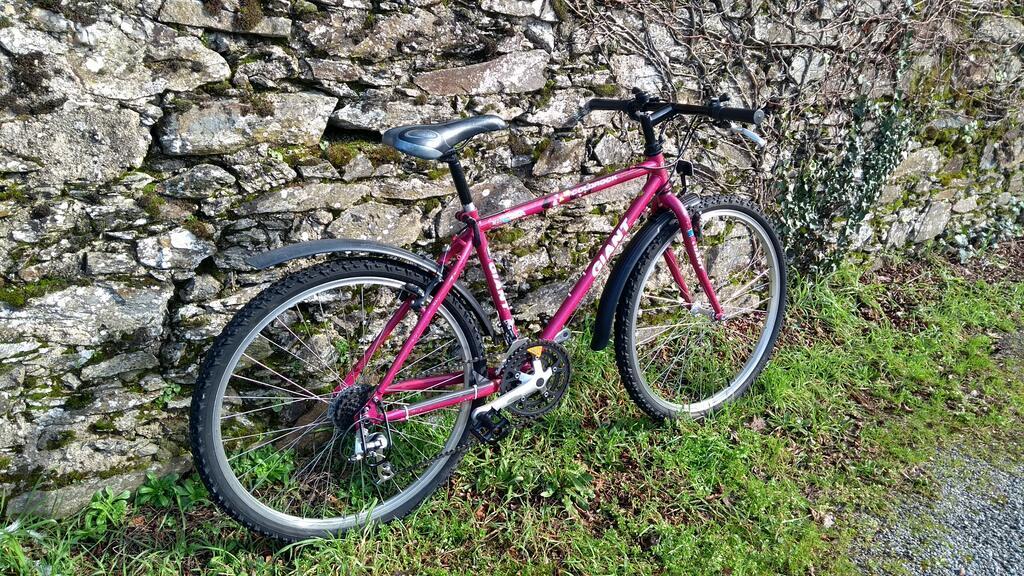 Giant Coldrock (pink) Mini_510