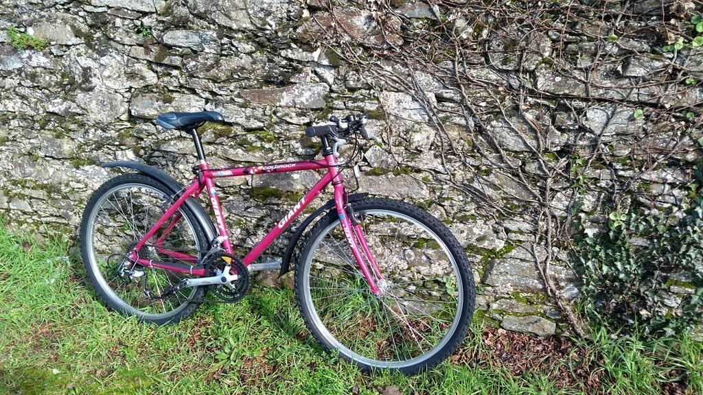 Giant Coldrock (pink) Mini_a10