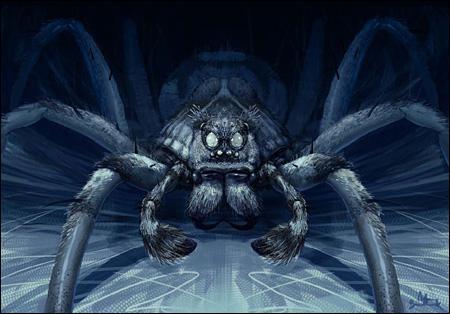 [FB] Graine verte sur une terre noire (Ft Erwin) Spider10