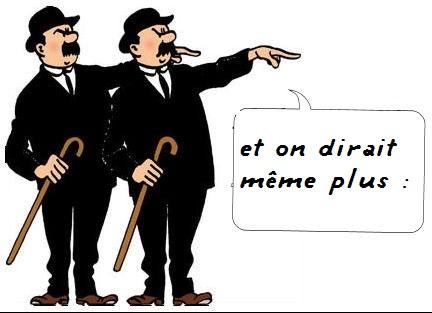 Les estates de pipayoux - Page 2 Dupont10