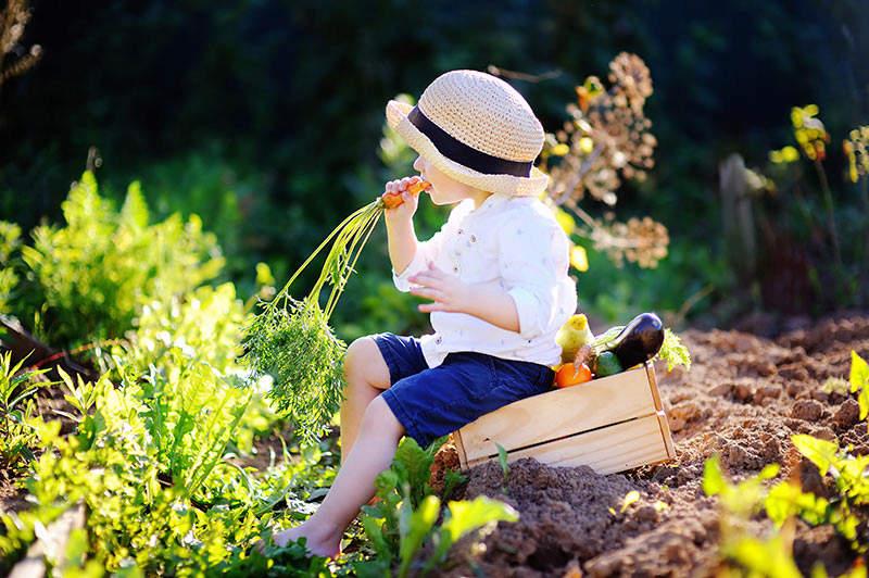 Concours photo : la pipe au jardin (été 2020) Little10