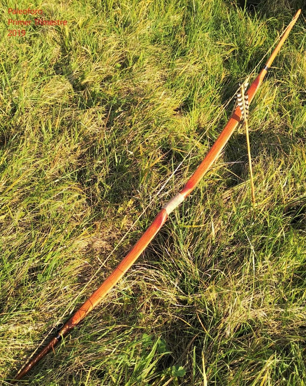 Mollegabet protegido con piel de serpiente Img_2080