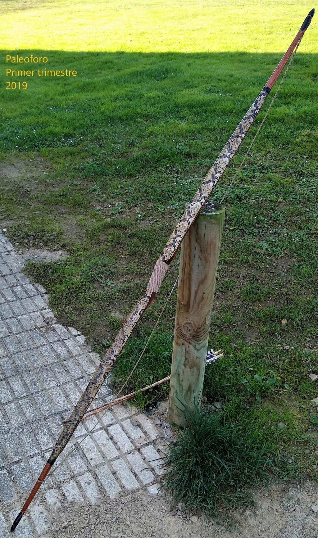Mollegabet protegido con piel de serpiente Img_2082