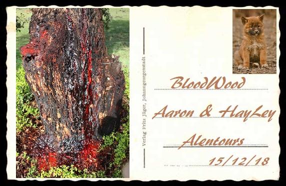 Liens d'HayLey Quinn Bloodw10