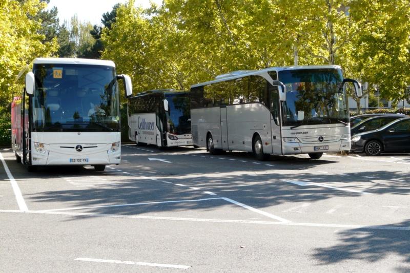 Mercedes TRAVEGO / TOURISMO - Page 7 Touris35