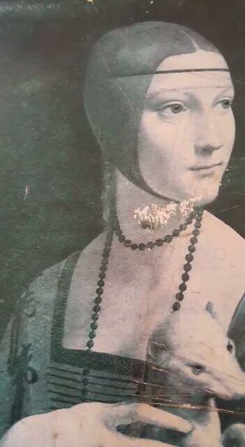 لوحة السيدة والقاقم ليوناردو دافنشي ١٤٩٠ للجادين فقط Bb25e110