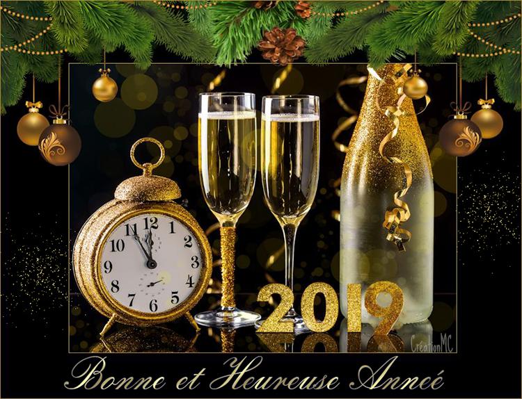 Pour la nouvelle Année 2019 N° 2 2019mc10