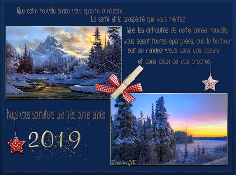 Pour la nouvelle Année 2019 N° 2 Bonne_20