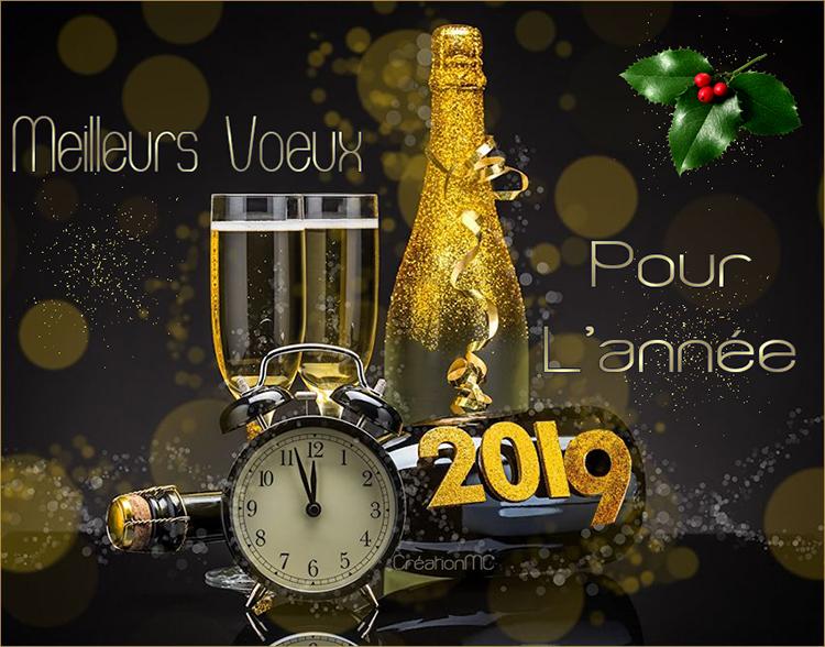 Pour la nouvelle Année 2019 N° 2 Champa10