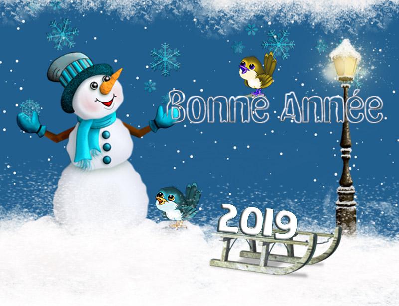 Pour la nouvelle Année 2019 N° 2 Nouvee10