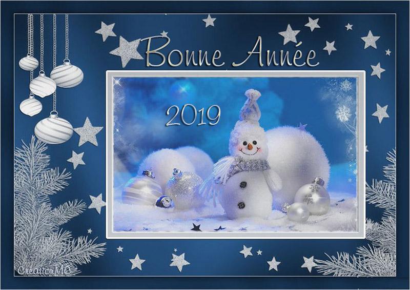 Pour la nouvelle Année 2019 N° 2 Nouvel14