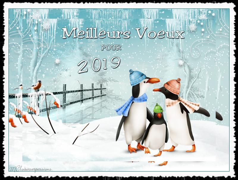 Pour la nouvelle Année 2019 N° 2 Pingou12