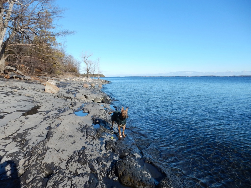 Lac Champlain 6cc73610