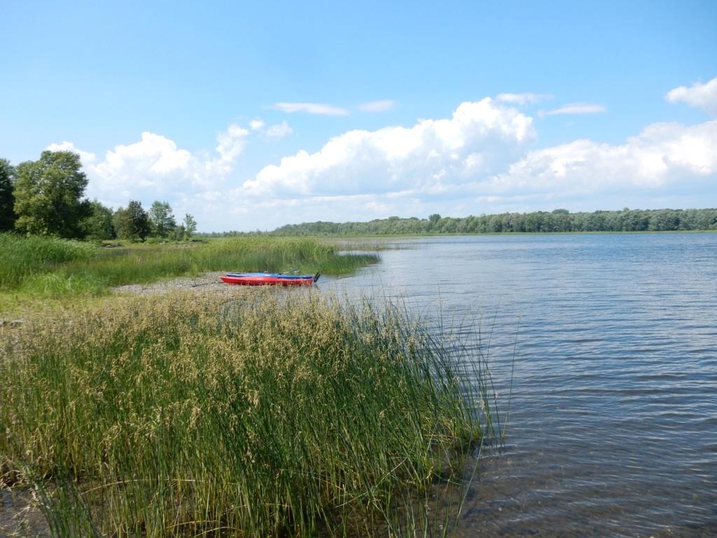 Bayou de l'isle Lamotte lac Champlain 9ff34d10