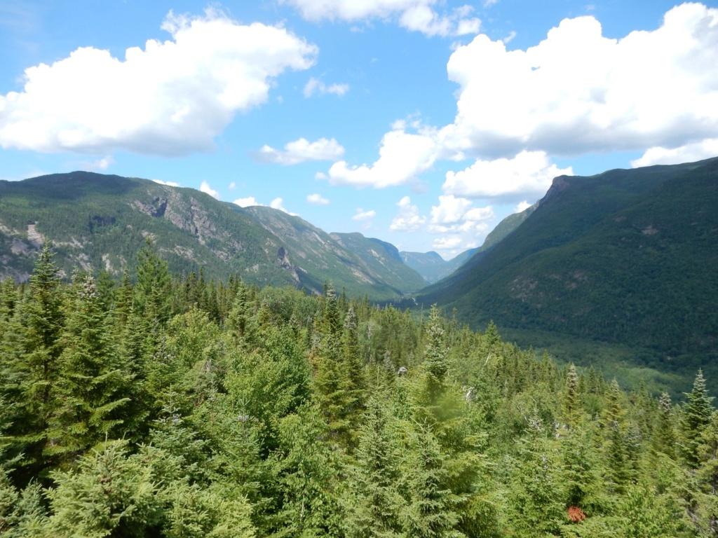 Hautes gorges de la rivière Malbaie B89c3910