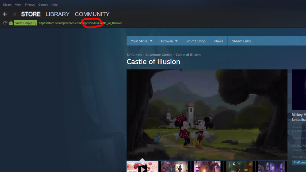 [TUTO] Add Steam games to RetroBat (or any game from EPIC or other via steam) Steam_10