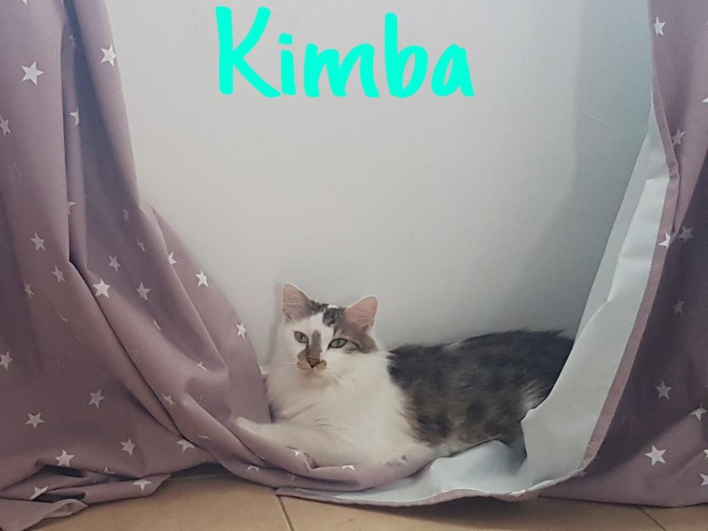 KIMBA  Inboun11