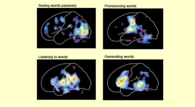 Language: The origin of language 1711