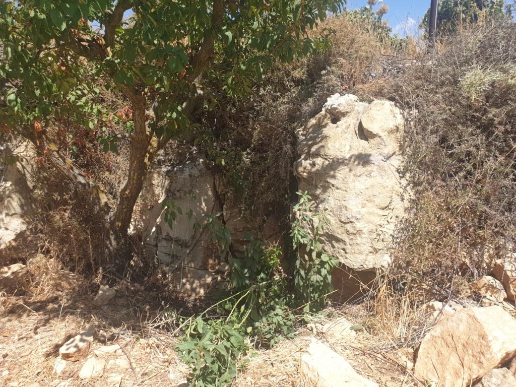 مجسم راس ثور ؟ ارجو المساعدة 20200815
