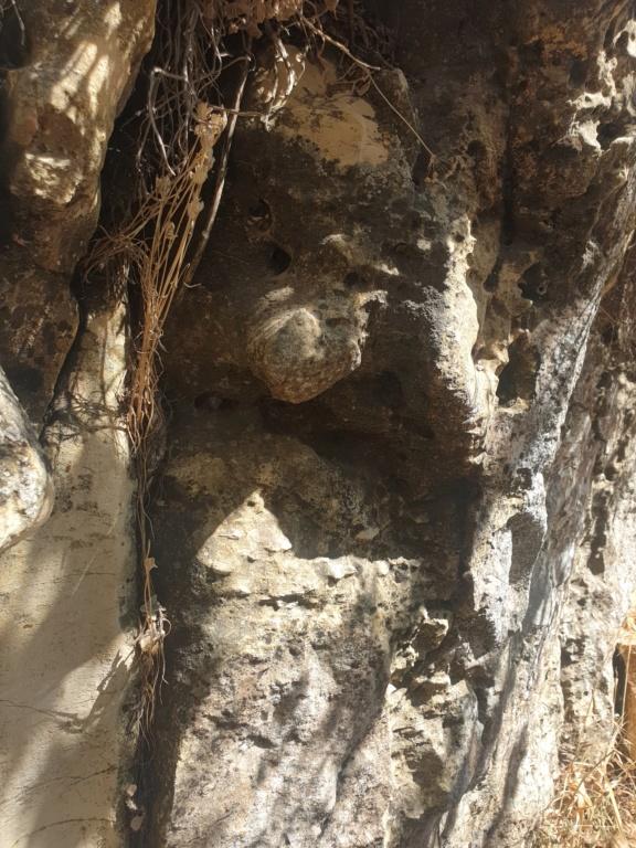 مجسم راس ثور ؟ ارجو المساعدة 20200817