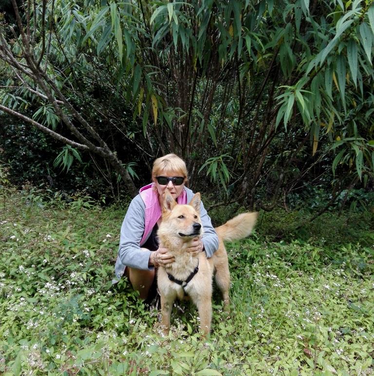 MANOOSH, chienne marron aux poils mi-longs de 6 ans environ pour 18 Kg - Marrainée par Pat84 Img_2031
