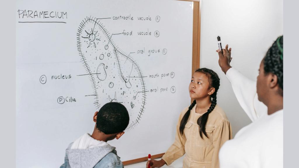 Gia sư môn Sinh dạy kèm tại nhà quận 2 TP.HCM Gia-su15
