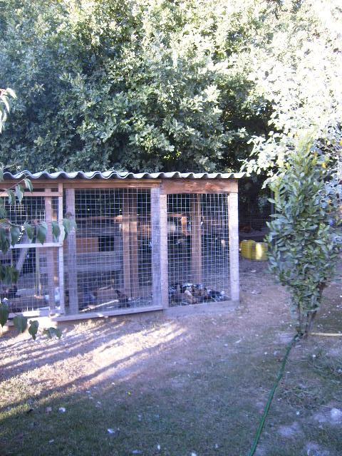 L'élevage de Mayeli Site_010