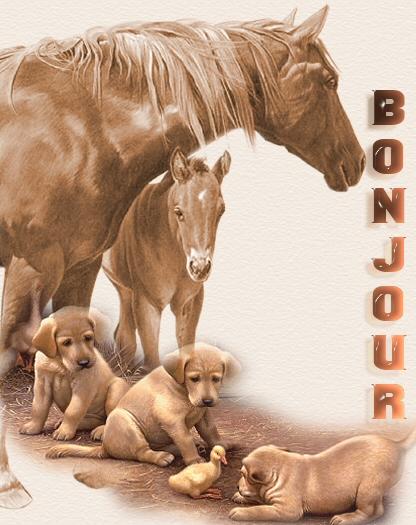 BONJOUR BONSOIR ET LE RESTE - Page 10 Bonjou16
